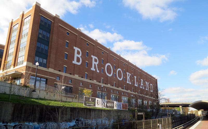 Brookland Daniel Lobo crop