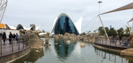 l'oceanografic aquarium Valencia Spain