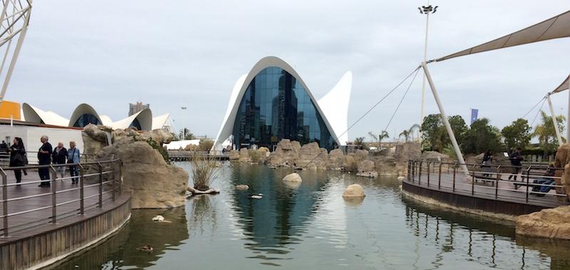 l'oceanografic aquarium Valencia Spain