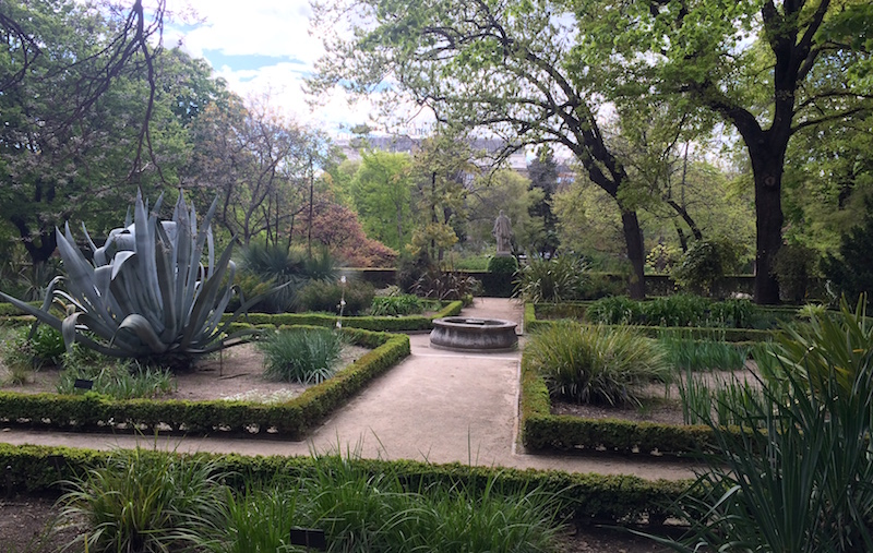 botanical gardens madrid
