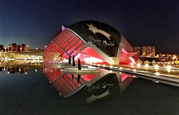 Bon Nadal City of Arts and Sciences Valencia Spain