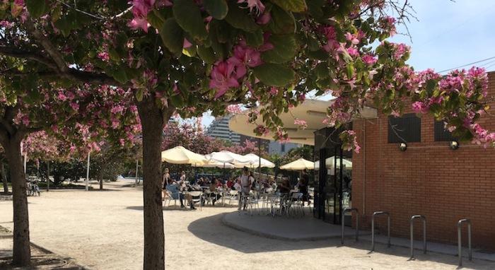 Gulliver Cafeteria Turia Gardens Valencia