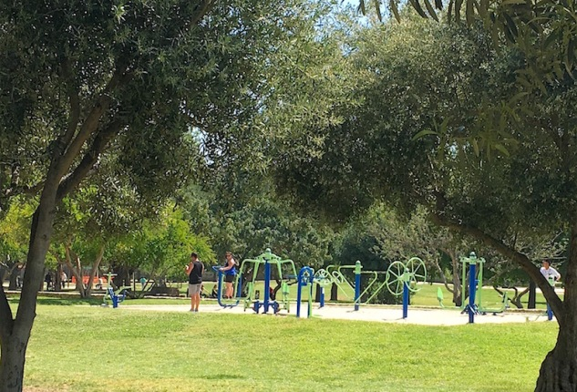 Jardines-Turia-Outdoor-Gym