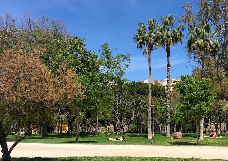 Jardines-Turia-Sun-Lounging