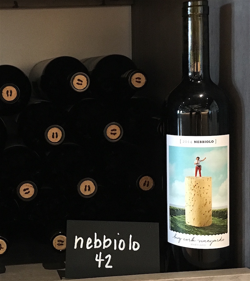 Big-Cork-Vineyards-Nebbiolo