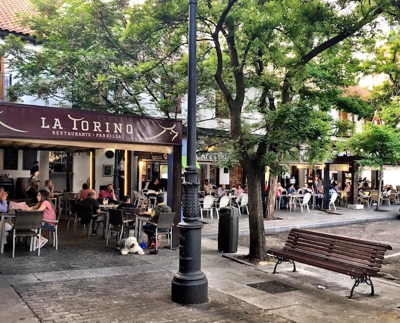 Plaza-Mayor-La-Torino