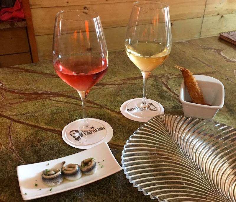 Wine and Tapas Vuelve Carolina Valenica Spain