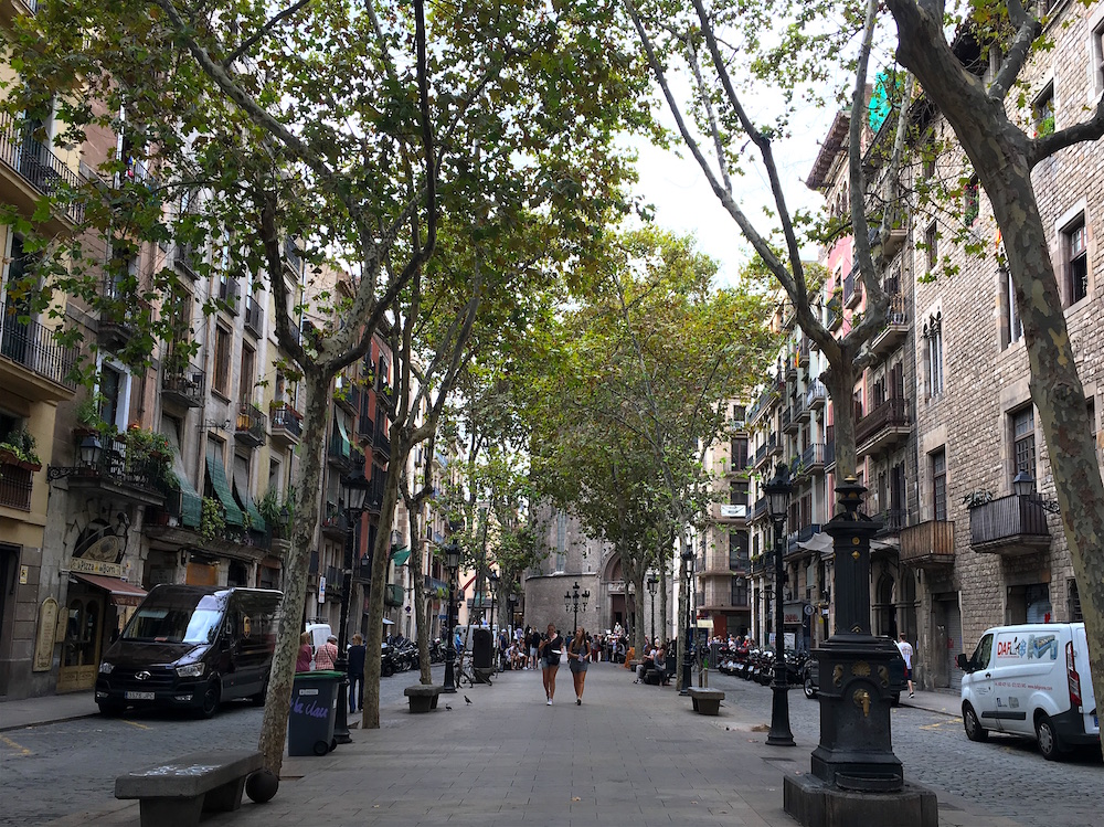 El-Born-street
