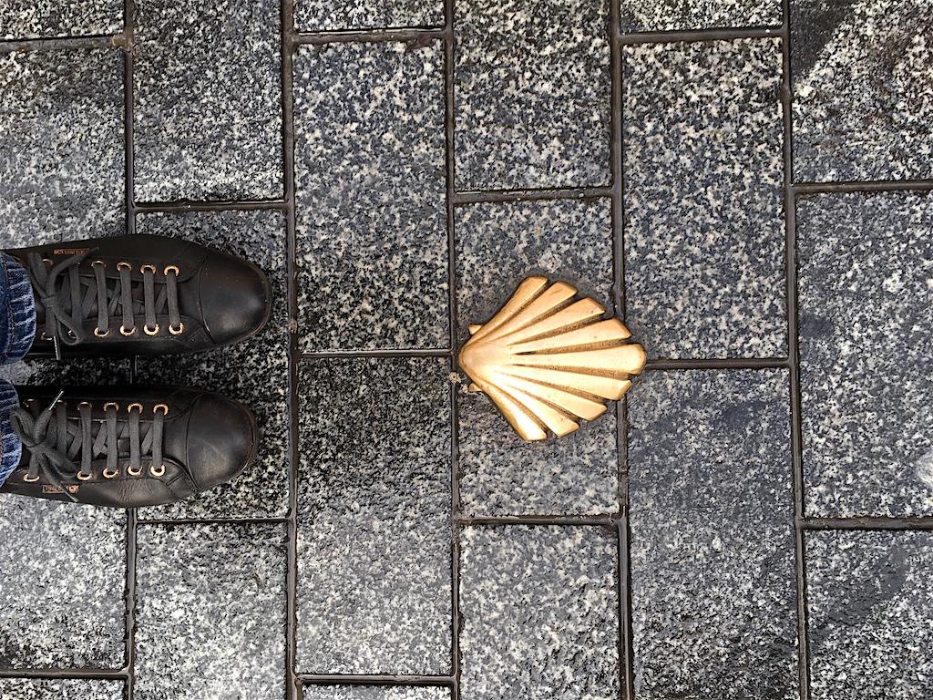 scallop shell sidewalk camino de santiago leon spain