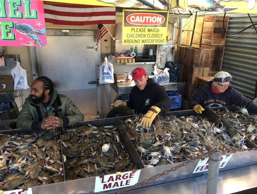 Blue Crabs Maine Avenue Fish Market Washington DC
