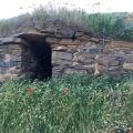 Bodega-Cave-with-flowers