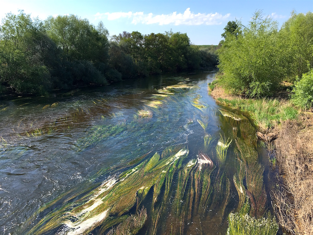 Orbigo river La Nora del Rio Castilla Leon