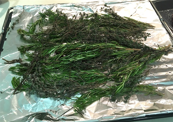 A bed of aromatic herbs