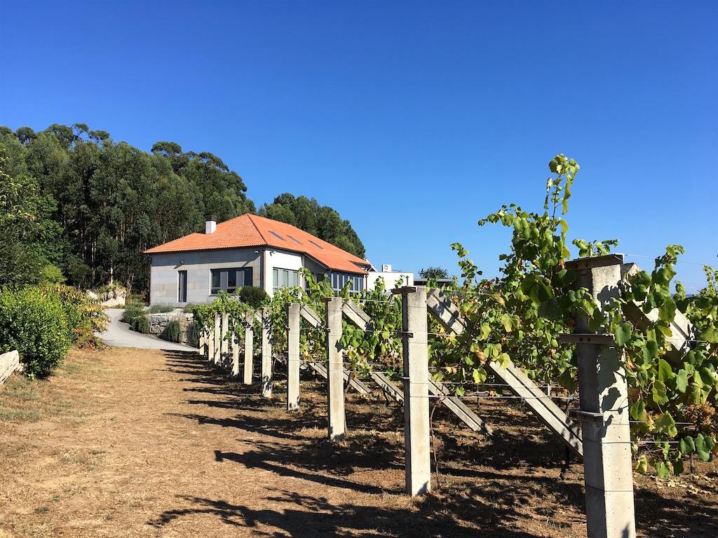 Adega Eidos winery vineyard galicia spain
