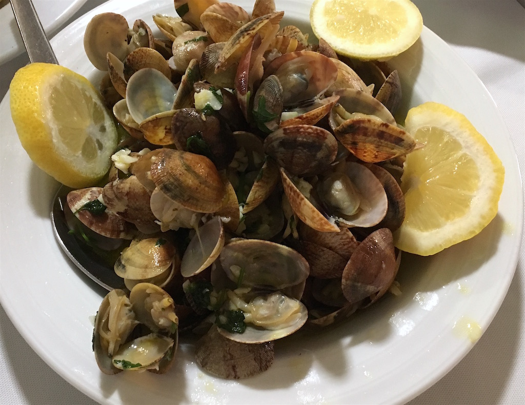 clams from Algarve Portugal