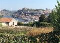 Porto Portugal Douro River View