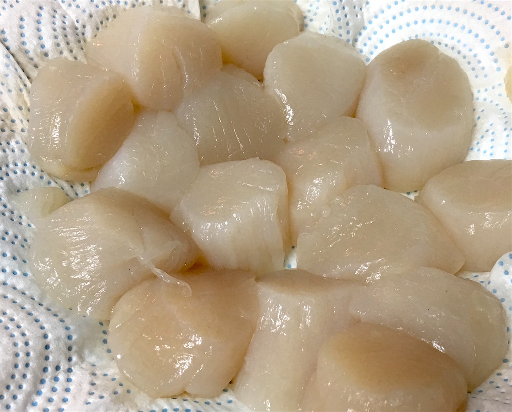 dry sea scallops on paper