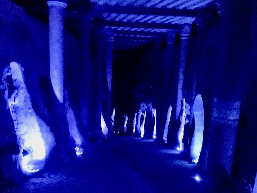 Viñedo Toyan wine cave
