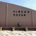 Viñedo Toyan san miguel de allende mexico