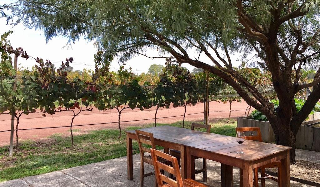 Cuna de Tierra winery Guanajuato Mexico