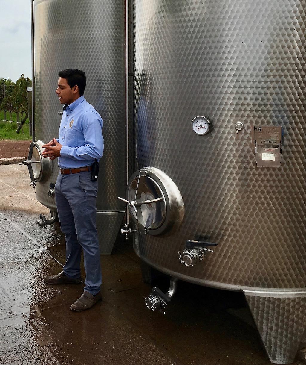 cuna de tierra winery tour
