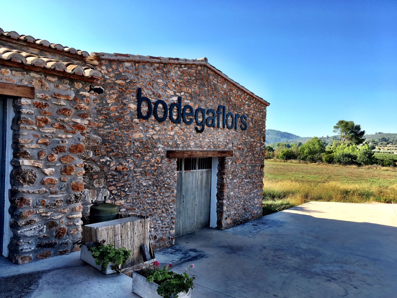 Bodega Flors Castellon Spain Winery